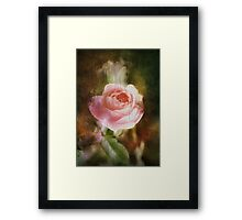 Computer generated old painting of a pink rose  Framed Print