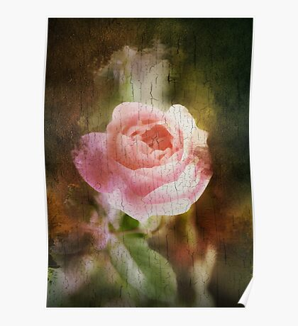 Computer generated old painting of a pink rose  Poster