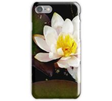 nature's beauty iPhone Case/Skin