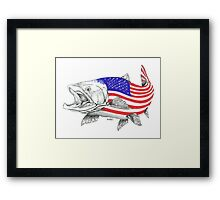 American Steel Head Salmon Framed Print
