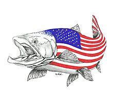 American Steel Head Salmon Photographic Print