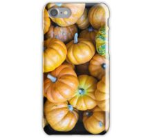 Pile of Mini Pumpkins iPhone Case/Skin