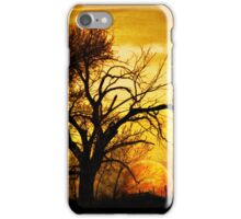Country Sunset iPhone Case/Skin