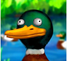 Special Occasion Endorsement Duck by Smallbrainfield