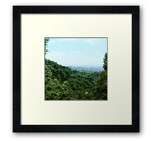 "#886.002 ""Tranquil Forest/ Taichung"" Framed Print"