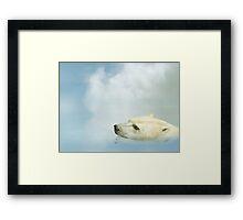 Polar Bear Framed Print