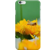 Grasshopper on Flower iPhone Case/Skin