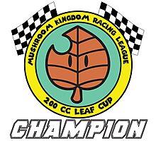 Leaf Cup Champion Photographic Print