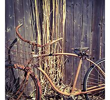 Vintage Rust Photographic Print