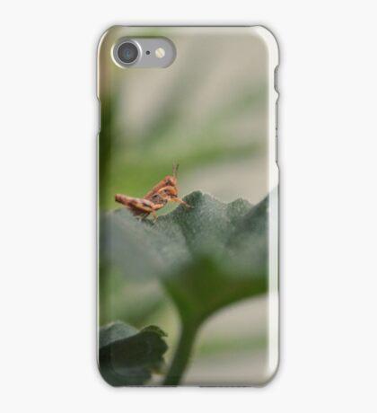 Grasshopper on Leaf iPhone Case/Skin