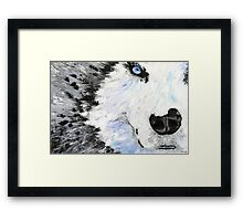 Blue Eyed Wolf Framed Print