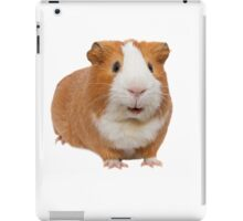 red guinea pig iPad Case/Skin