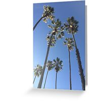 palm trees in the sky Greeting Card