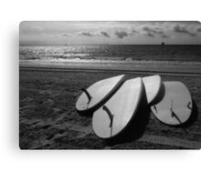 I stand up paddle Canvas Print