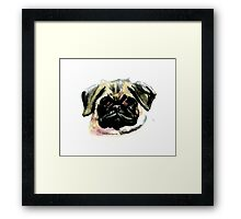Pug Watercolor Painting Framed Print