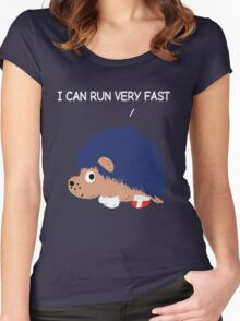 Blue Hedgehog Women's Fitted Scoop T-Shirt