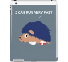 Blue Hedgehog iPad Case/Skin