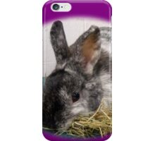 Little bunny picking hay iPhone Case/Skin