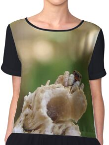 Perched Jumping Spider Chiffon Top