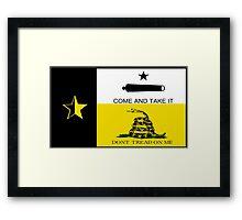 Texas Anarchist Flag Framed Print