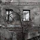 Nobody lives there anymore 1 by JuliaPaa