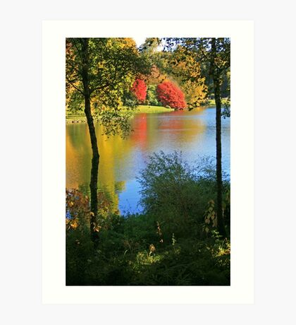 Autumn Colours in Wiltshire Art Print