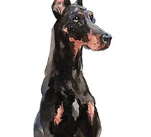 Doberman watercolour painting by groovyart