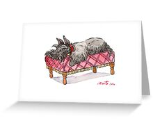 Scottie on a couch Greeting Card