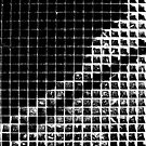 Grid. by Paul Pasco