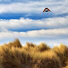 Kite Over The Hill by James Eddy