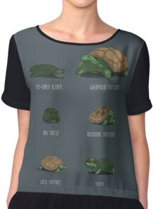 Know Your Turtles Chiffon Top