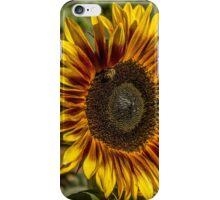 Sunflower HDR iPhone Case/Skin