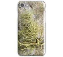 Lichen on tomb in Shalwy Valley, Kilcar, Donegal iPhone Case/Skin