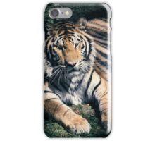 Bengal tiger iPhone Case/Skin
