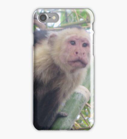 The Monkey iPhone Case/Skin
