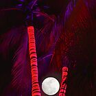 Palm Tree Nights by DDMITR