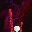 Palm Tree Nights by DDMITR