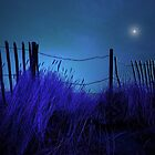 BLUE MOON by leonie7