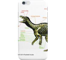 Eoraptor Skeleton Study iPhone Case/Skin