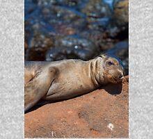 Ecuador. Galapagos Islands. Baby Seal. Afternoon Nap. Unisex T-Shirt