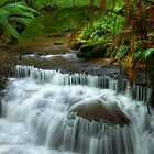 Lady Barron Creek cascades by Kevin McGennan