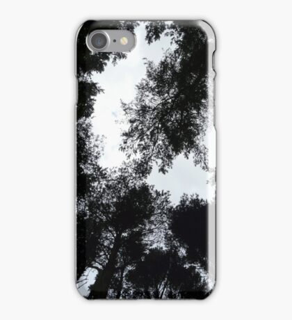 Tree Silhouettes against the Sky  iPhone Case/Skin