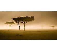 Masai Mara #2 Photographic Print