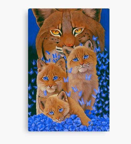 Bob  Cat Kittens Canvas Print