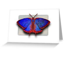 Primary (R)Evoloution  Greeting Card
