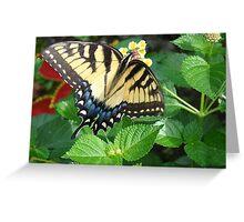 Tiger Swallowtail on Lantana Flowers Greeting Card