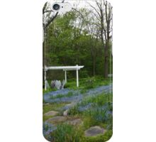 By the Meadow iPhone Case/Skin