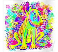Colour Splash Bull Terrier Poster  Poster