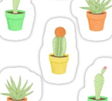 Colourful Cactus plants Sticker
