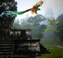 Quetzal over Tikal  by norakaren